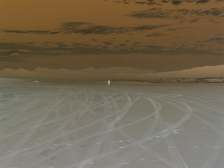 Untitled (9485 #FC), 2008, pigment print