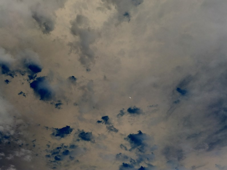 Inverted color photograph of a cloudy sky with a bird in flight in the distance