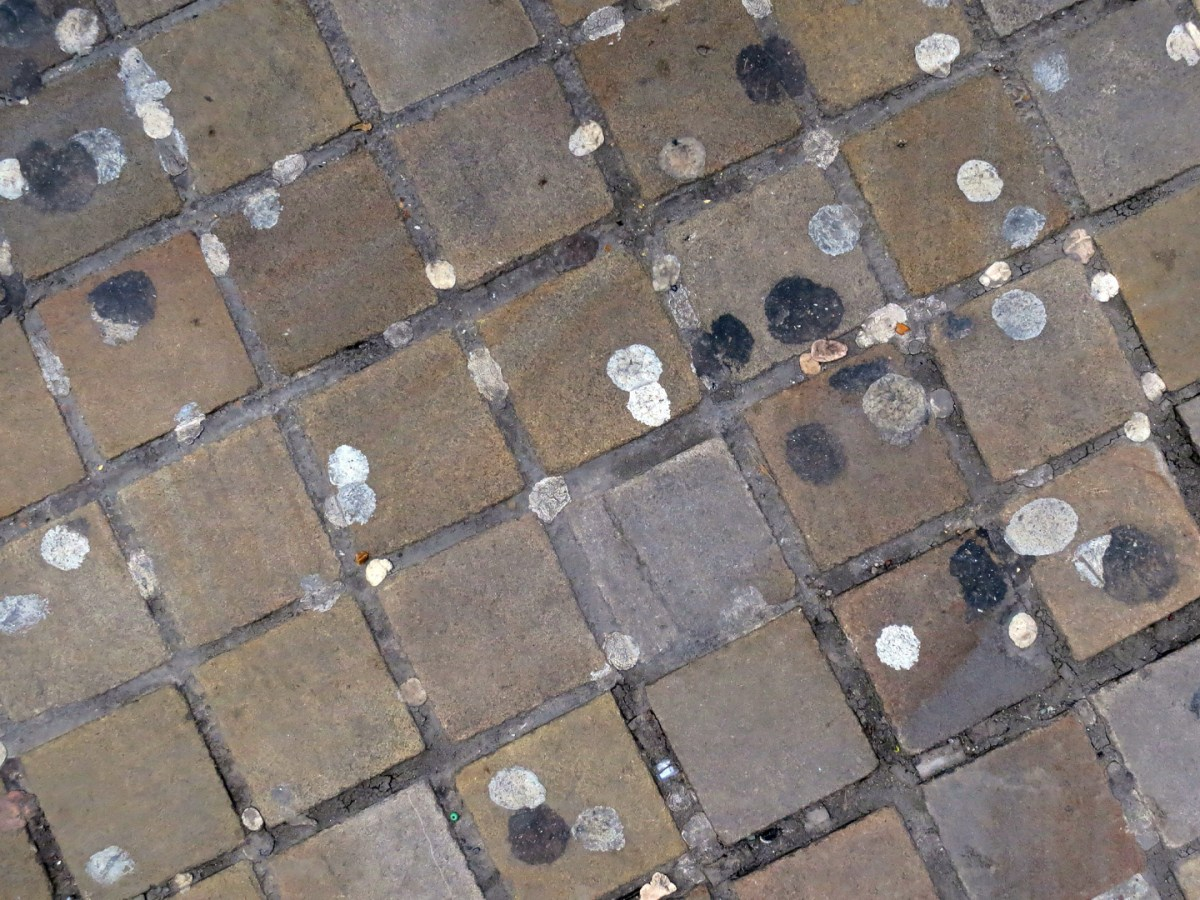 A photograph of a brick sidewalk, with many spots of old chewing gum pressed on the brick.