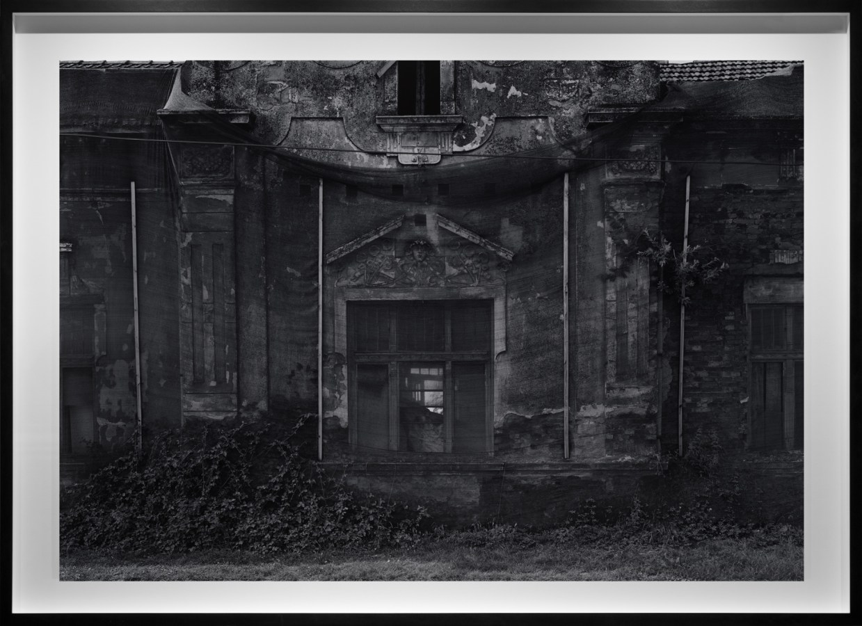 Black-and-white photograph of a derelict entrance way with an overgrown stoop