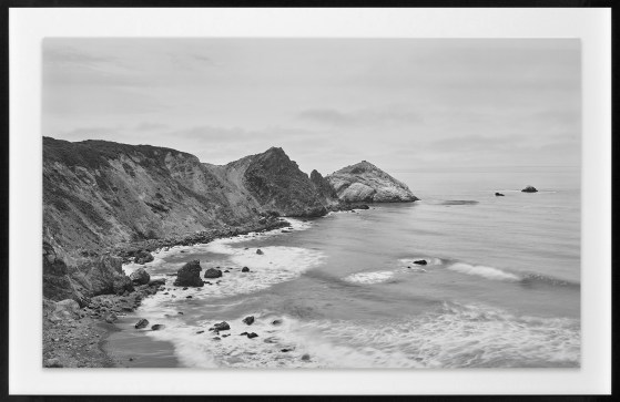 Richard Learoyd, Big Sur I, 2018, gelatin-silver contact print