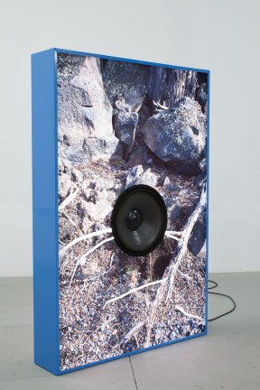 A photograph of branches and rocks on the ground on a blue-framed lightbox, with a speaker in the center.