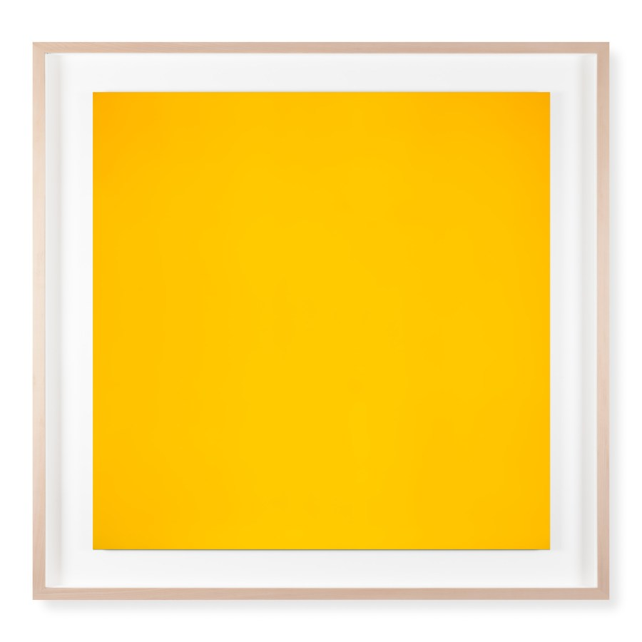 A framed photograph of a bright yellow color field