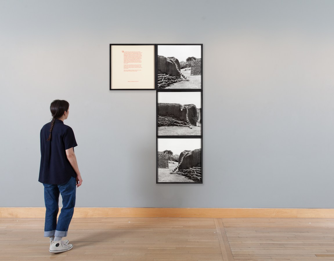 Installation view of a woman looking at a set of framed photographs.