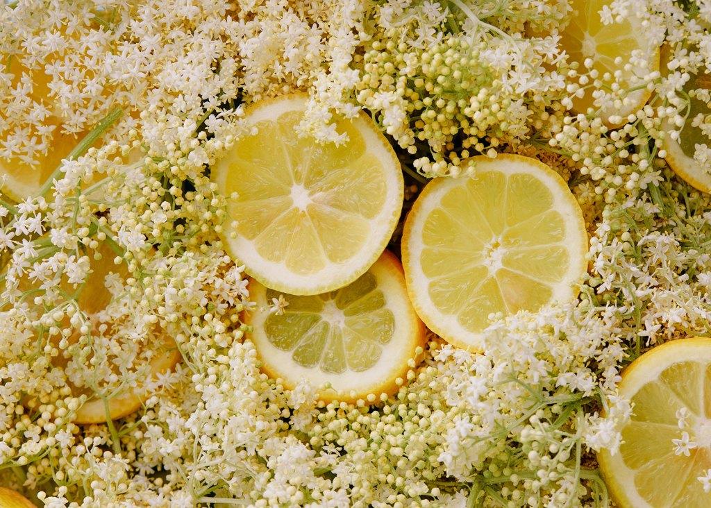 Holunderblüten und Zitronen