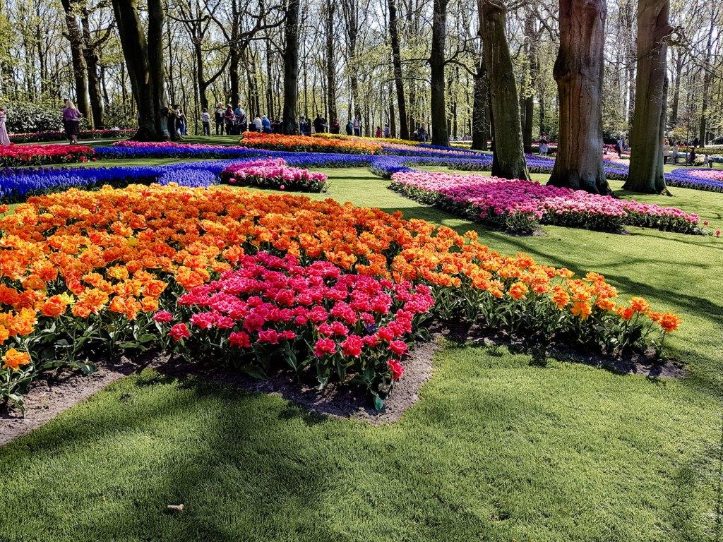 Mosaik Tulpen