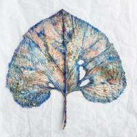 Angela Andorrer, Blattscape Blue Pink, 2019