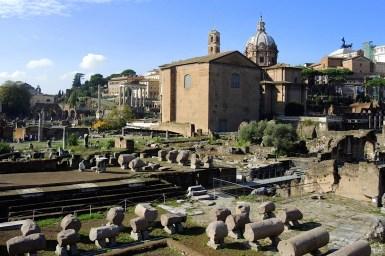 Rzym_Forum Romanum 01