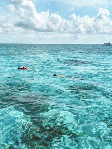 Kajmany atrakcje co warto zrobić Stingray City pływanie z płaszczkami na Kajmanach-003