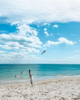 USA-stan Floryda-Key Biscayne-plaża w okolicy latarni morskiej 13