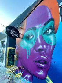 street art atrakcje zwiedzanie co warto zobaczyć w Miami dzielnica graffiti Wynwood 004
