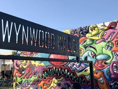 street art atrakcje zwiedzanie co warto zobaczyć w Miami dzielnica graffiti Wynwood 017