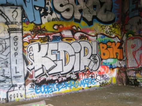 besancon_10.03.13_graffiti_VNV_Kedir (2)