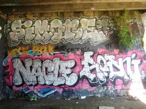 besancon_graffiti_26.27.05.13 nacle_simone_rodni