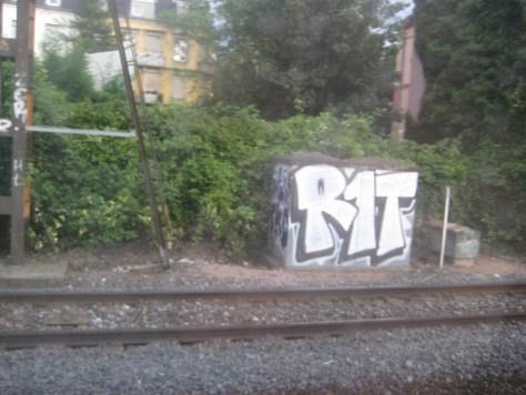 R1T-graffiti-alsace-2013 (1)