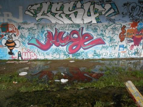 septembre 2014 CESU, Huge - graffiti - besancon, arenes (1)