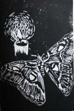Moth to a Flame, Victoria Holt. 2016