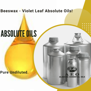 ABSOLUTE OILS