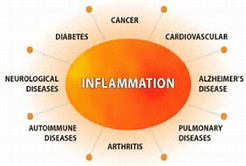 HEALTHY AGING & INFLAMMATION