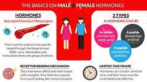 HORMONE HEALTH SUPPORT