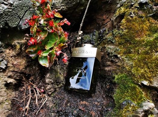 Christmas Fragrance Shopping - Bulgari Man Wood Essence EDP