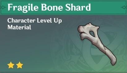 Fragile Bone Shard