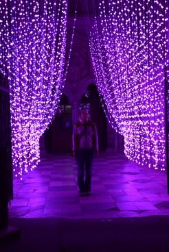 Abbey lights in Salisbury