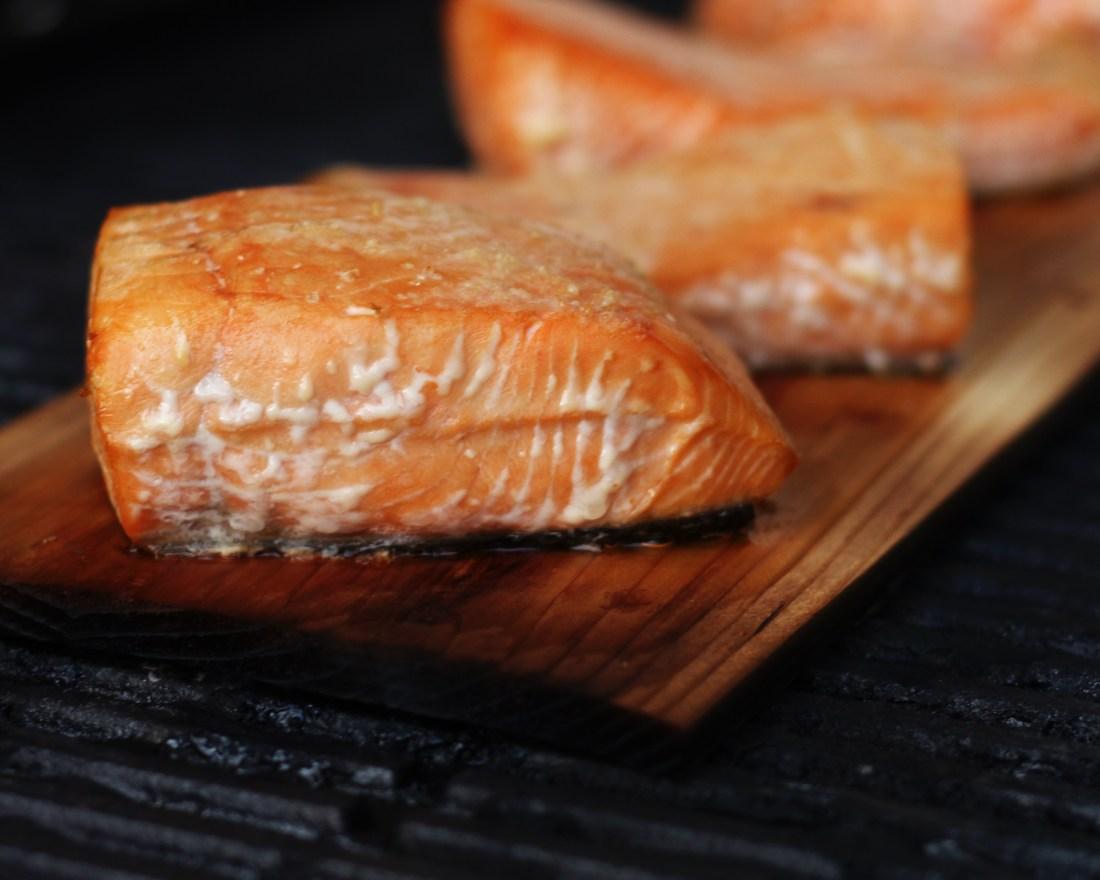 Salmon fillets on cedar plank