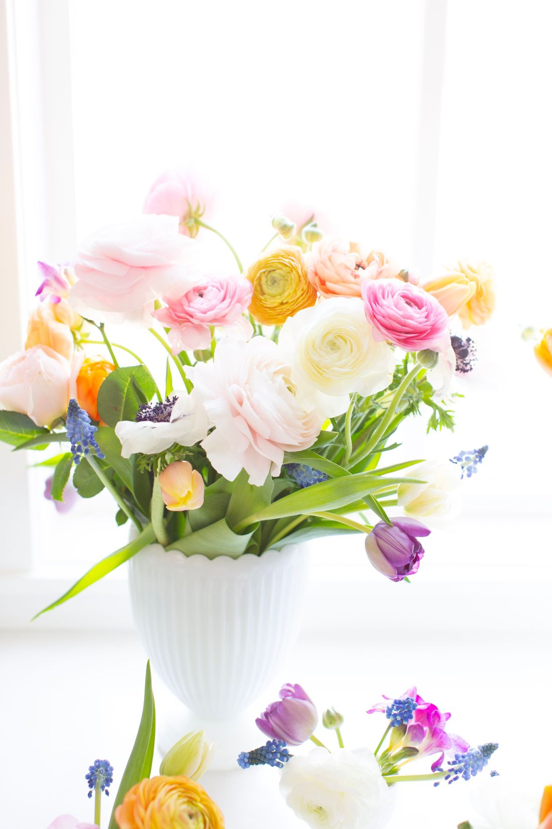 Spring Flowers with ranunculus, tulips and grape hyacinth in a milk glass vase