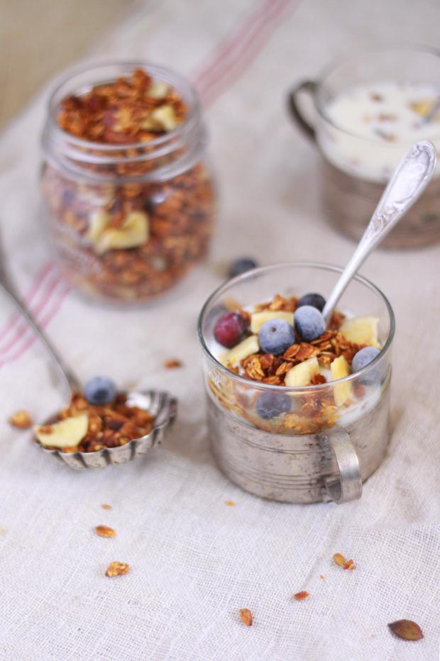 Granola-aux-fruits-secs-et-aux-myrtilles3
