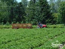 Tracteur navette pour vous amener et vous chercher au champs