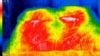 IR image of bed showing heat absorbed from a person