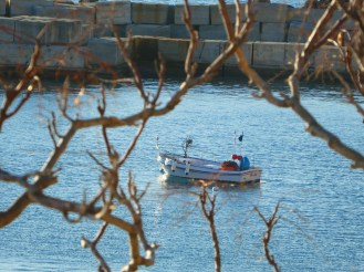 Rami, barche e mare