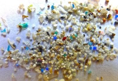 Mikroplastik hissəciklərə bütün şirin su çöküntülərində rast gəlinir