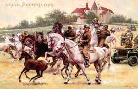 """RESCUING THE LIPIZZANERS The 2nd U. S. Cavalry Group drives the famous horses away from approaching Russian troops and possible slaughter. Image size 16 X 25"""" Current price - Call"""