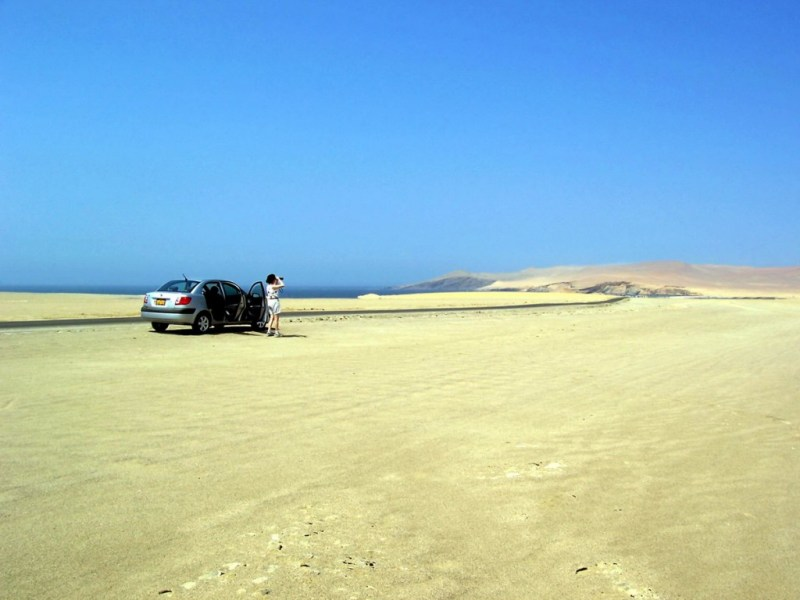 Jean at the National Reserve of Paracas - Peru