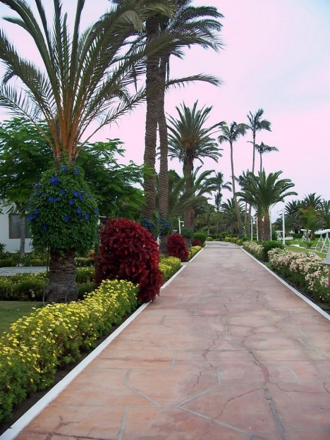 walkway and gardens, hotel paracus, peru