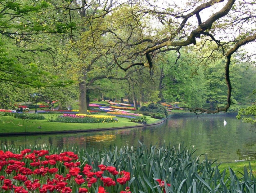 An image of tulip beds beside a larger pond at Keukenhof Gardens near Lisse in the Netherlands. Photography by Frame To Frame - Bob and Jean.