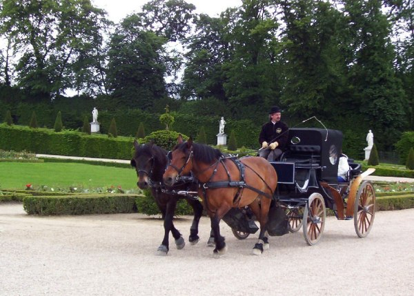 An image of a horse-drawn carriage at the Palace of Versailles in France.