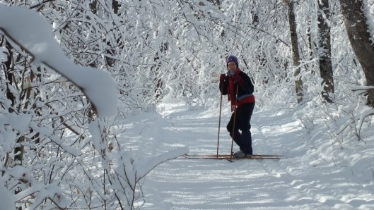 Jean on wintery Fen Lake Ski Trail - Algonquin Park - Ontario