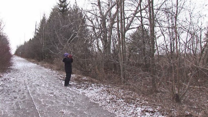 Jean shoots barred owl, Thickson's Woods - Whitby - Ontario