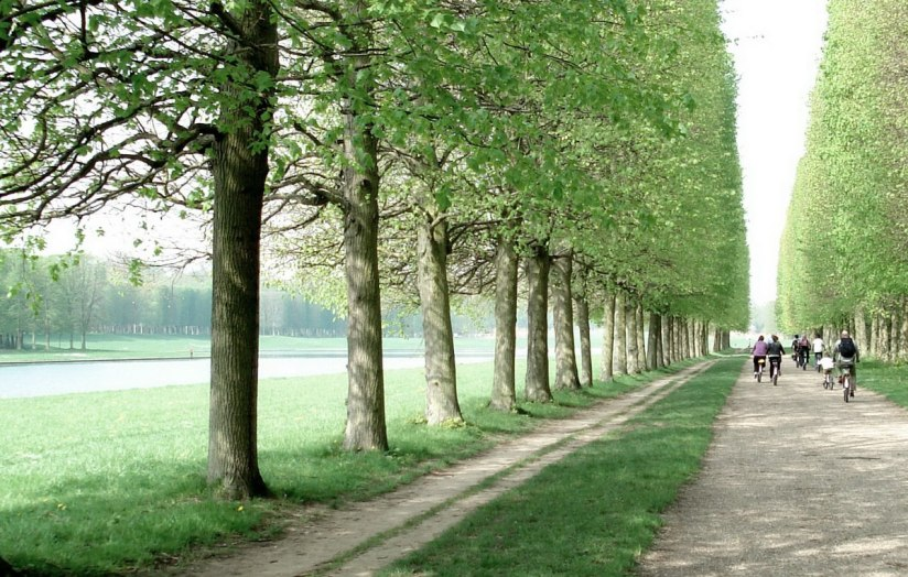Bikes at Domain of Versailles - France