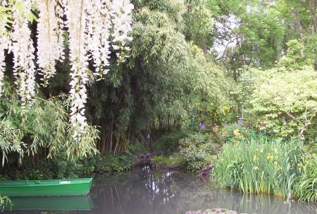 An image of Wisteria growing above Monet's Lily Pond in Giverny, France.