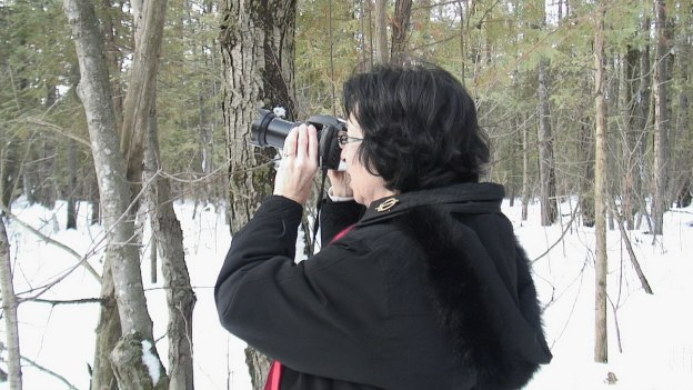 Jean takes photograph of a Great Grey Owl in tree near Ottawa