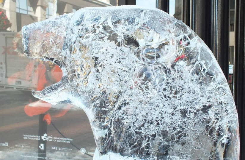 Ice sculptured Polar Bear head- Winterlude - Ottawa