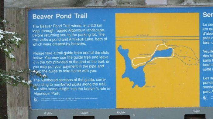 Beaver Pond Trail sign - Algonquin Provincial Park