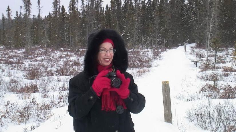 Jean at Spruce Bog boardwalk, Algonquin Provincial Park, ontario