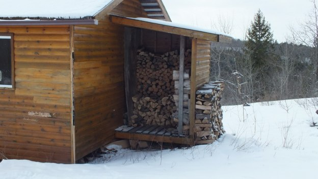 Photo of the Pinetree shelter - firewood - Algonquin Park