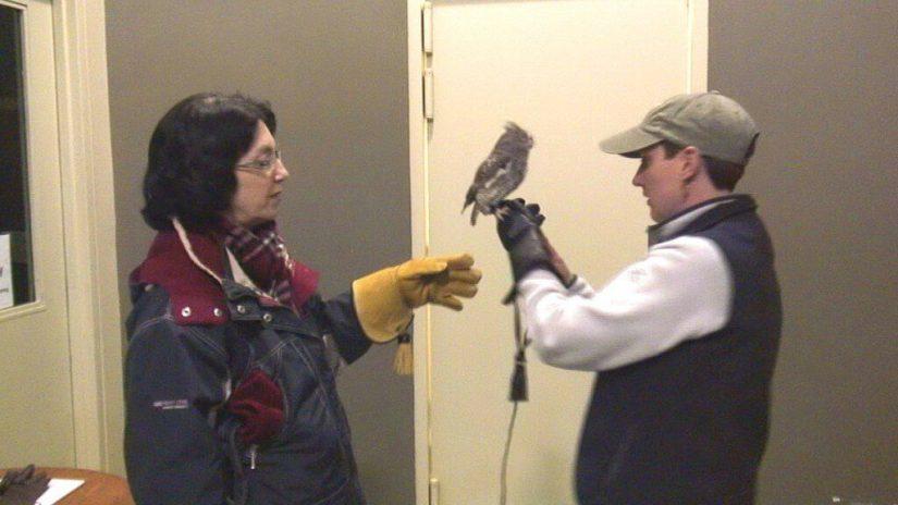Sandra and Jean with a Eastern Screech Owl -- Mountsberg Raptor Centre