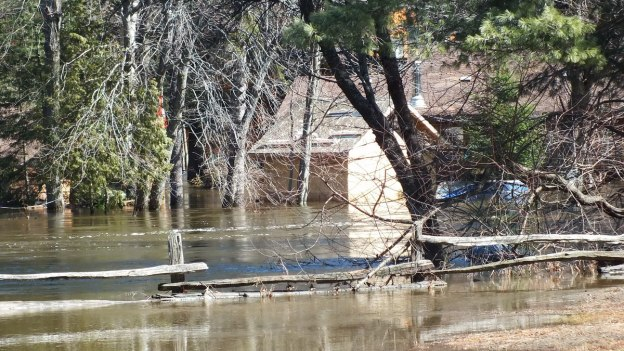 Big East River flood zone - flooded forest and homes - Huntsville, Ontario - April 21 2013